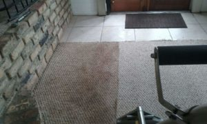 sarasota steam cleaning carpet