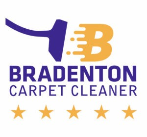 Do It Yourself Tips To Carpet Cleaning Like A Professional